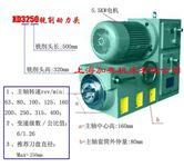 XD3250铣削动力头