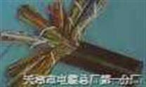 阻燃通信电缆-HYA-全塑通信电缆