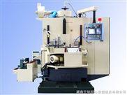 YTDM-750A数控立式双端面磨床