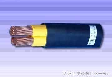 VV,VV22,ZRVV,ZRVV22电力电缆-直埋电力场合使用,
