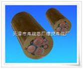 KVVP2铜芯屏蔽控制电缆,北京KVVP2电缆代理商价格