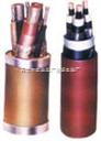 KVVP2矿用屏蔽控制电缆,KVVP2标电缆