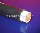 MYPT煤矿用阻燃橡套软电缆,甘肃MYPT电缆供应商