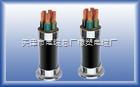 ZRKVV22 阻燃铠装控制电缆