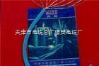HYA22全塑市话电缆HYA22电缆新价格