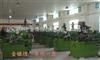 搓丝机,螺丝搓丝机,螺丝机器厂